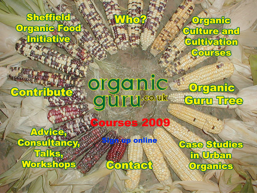 Organic Guru index - clickable picture